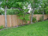pdx_deck_and_fence006053.jpg